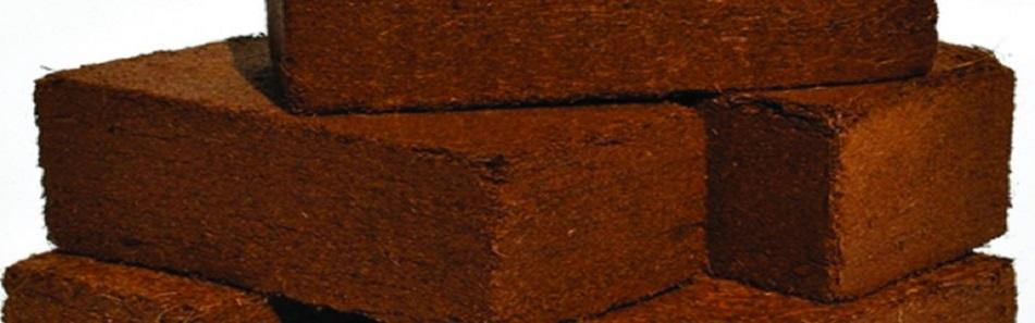 کوکوپیت